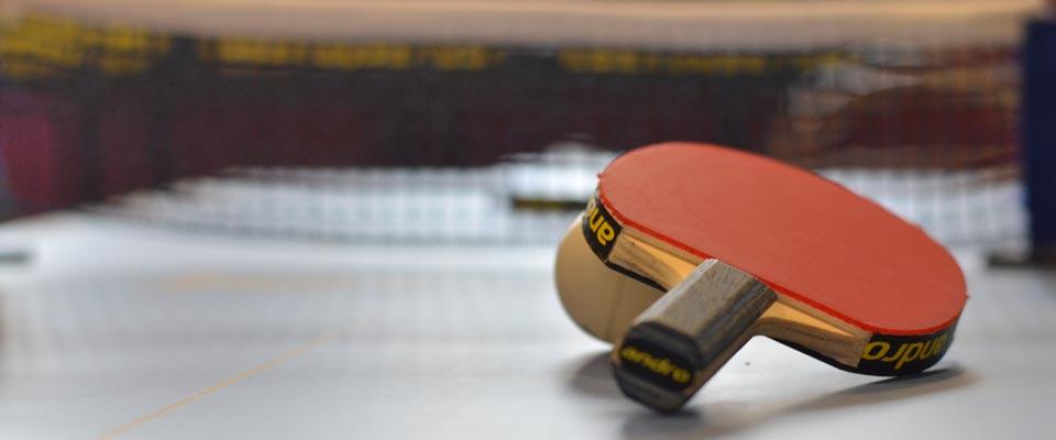 ff-tischtennis-show